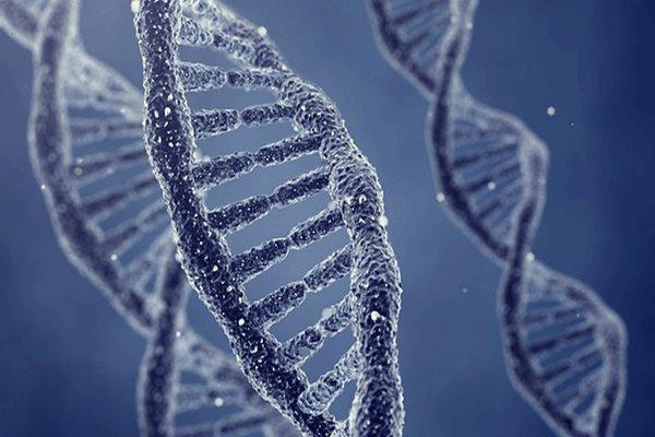 تولید واکسن کرونا با تبدیل DNA به ویروس