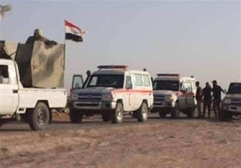 عراق، شهادت یک رزمنده حشد شعبی، دستگیری یک تروریست داعشی در غرب الانبار