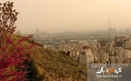 بام تهران؛ محلی برای تماشای پایتخت از بالا !