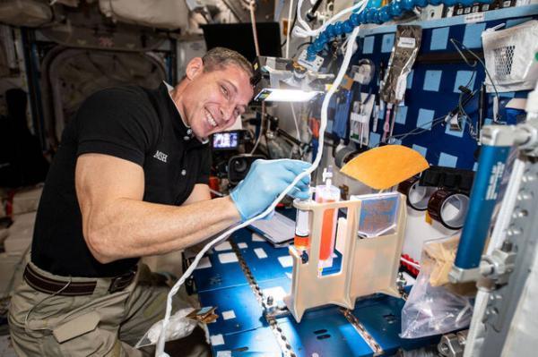 ناسا موثرترین راه آبیاری گیاهان در فضا را دنبال می نماید