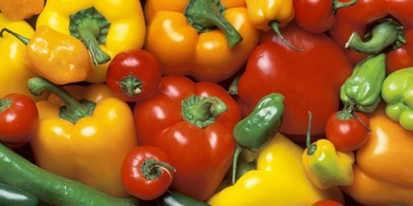 کالری فلفل دلمه ای سبز، زرد، قرمز و چیلی چقدر است؟